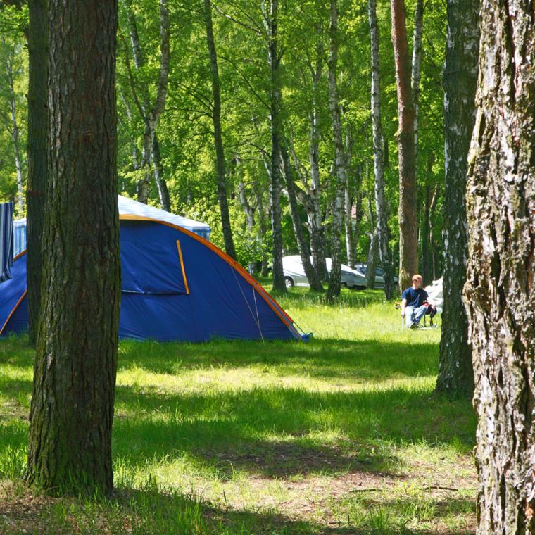 Camping im Wald; zum Strand nur 5 Minuten Fußweg