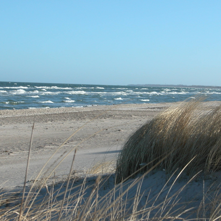 Strand in Dierhagen im Winter